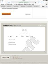 deydreaming.com pins