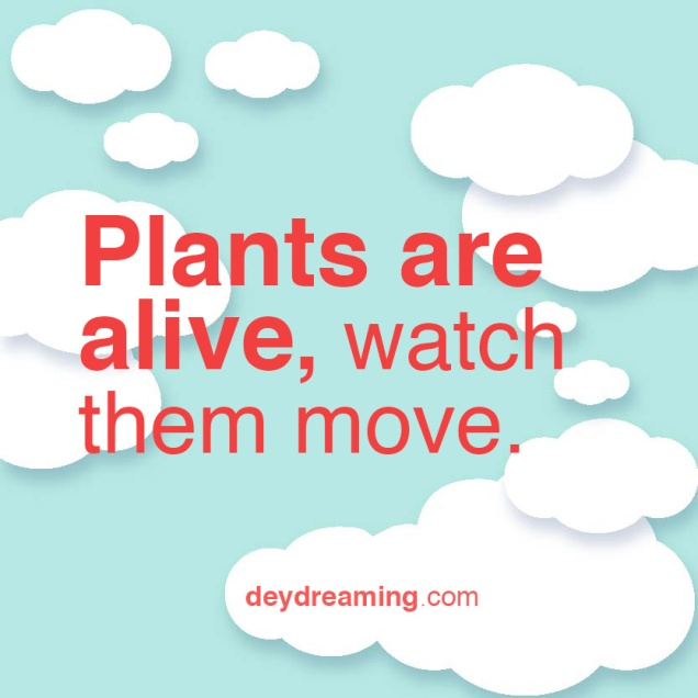 Plants are alive watch them move