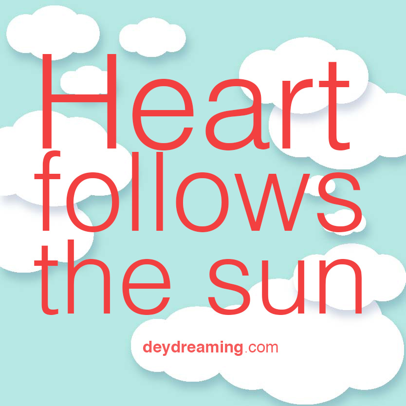 Heart follows the sun